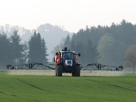 Kedvezően alakultak a termelői árak az első három negyedévben