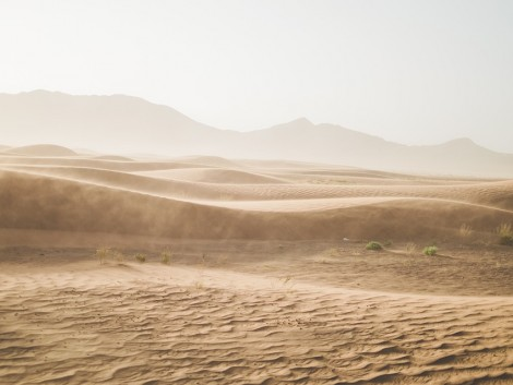 Zöldségtermesztés a sivatagban?!