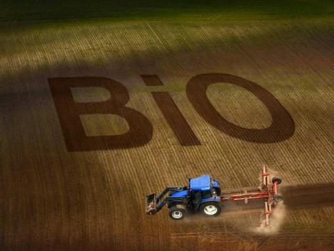 Egyes biogazdák ökológiai gazdálkodásban tiltott műtrágyákat használnak