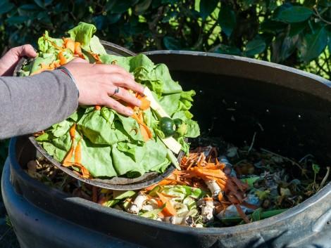 Így hasznosítsuk a zöldséghulladékokat!