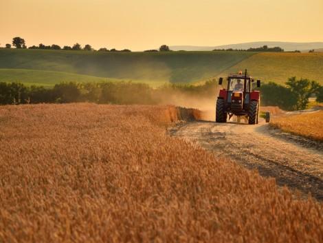A legtöbb termelő még a kockázatcsökkentést sem veszi fontolóra