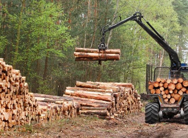 Ismét megnyitották az erdészeti gépberuházások támogatását
