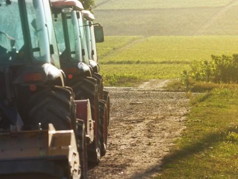 Egyesült a Kleffmann Group és a Kynetec, állategészségügyi és mezőgazdasági piackutató vállalatok