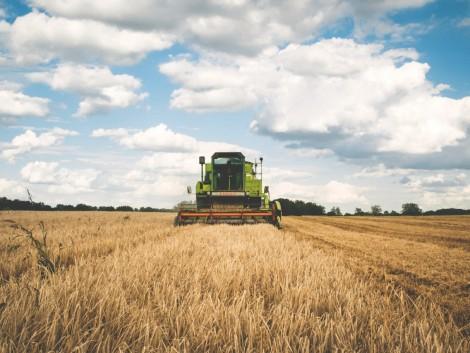 Csökkenő termelés, növekvő árak – itt az idei év mérlege
