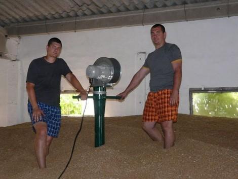 Hogy lehet a betárolt gabona értékét megóvni és biztonságosan tárolni?