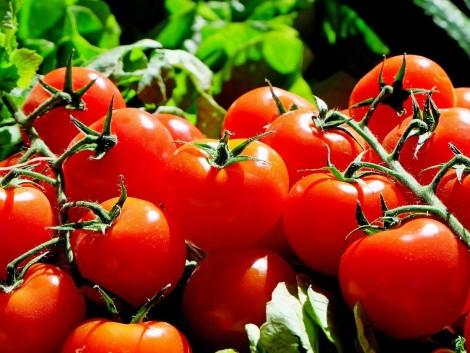 Már csak néhány napig lehet jelentkezni a gyümölcs-zöldségfeldolgozó képzésekre