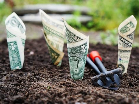 Tavaly 800 milliárd forint támogatás segítette a gazdálkodókat