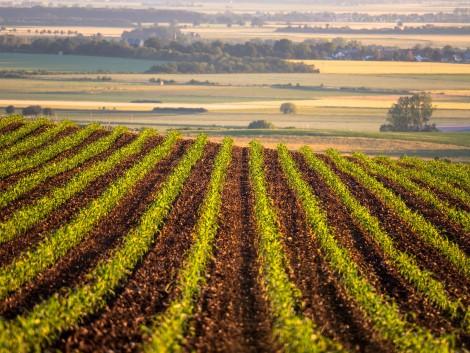 Itt letölthető a friss gazdálkodási napló