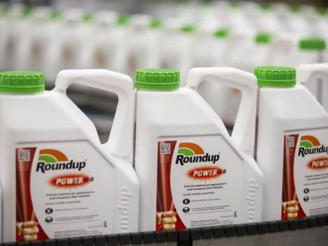 A Monsanto csődöt jelent, hogy megfékezze a kártérítési pereket?