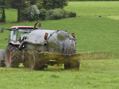 Összefogtak a gazdák a hígtrágya hasznosításáért