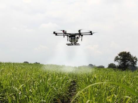 Megkezdte az agrártárca az új támogatási időszak tervezését