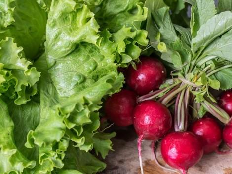 Dinnye héja, retek levele – sok zöldség teljes egészében fogyasztható