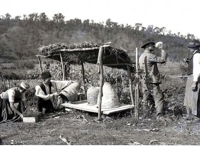 Fényképeken elevenedik meg a múlt századi, vidéki élet