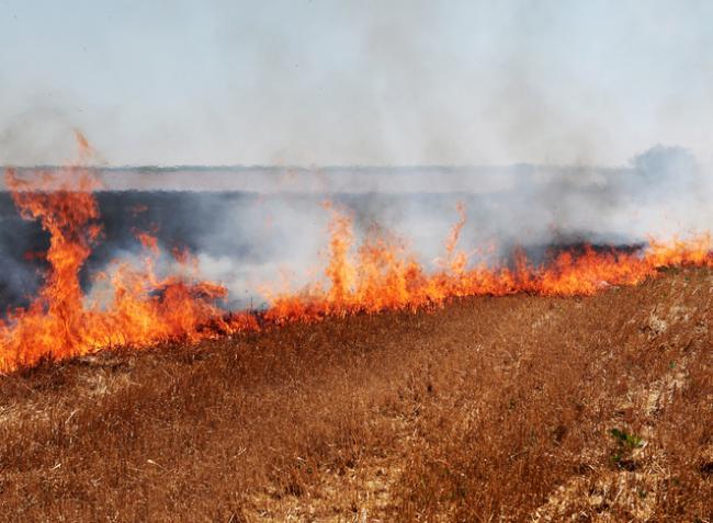Kötelező tűzvédelmi intézkedések aratás körüli munkákhoz! – LETÖLTHETŐ!