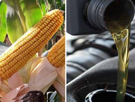 Inputanyag a gazdának – gázolaj és kenőanyag a gépeknek! – VIDEÓ!