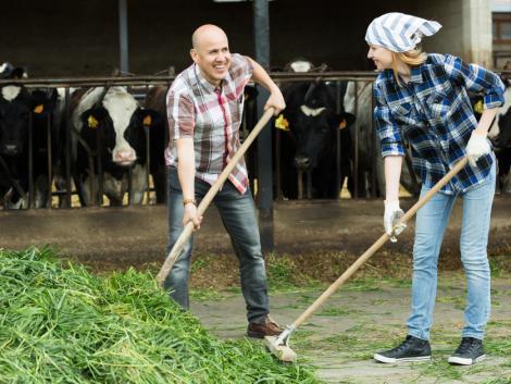 A mezőgazdaságot is elérték az álhírek! Nyugalom, időben érkezni fognak a kifizetések!