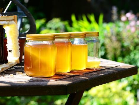 Ukrajna cukorsziruppal felhígított mézet exportál az EU-ba?