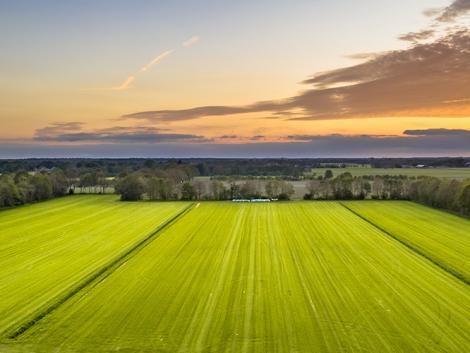A BASF ingyenessé teszi a xarvio Field Manager-t