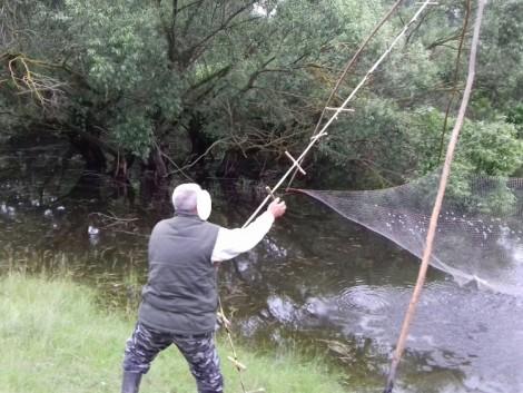 Egy nap alatt három orvhalászt ért tetten a Nébih