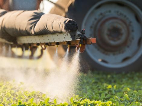 Beszéljünk a növényvédő szerek hasznáról és felelős használatáról!