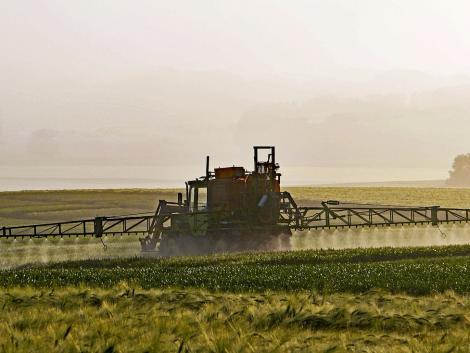 A francia agrárminiszter helyteleníti a glifozát betiltását