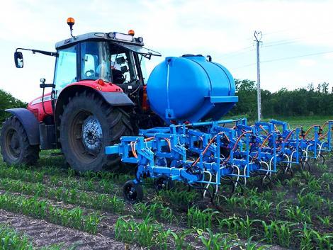 Nem mese, konkrét számok! Hogyan lett a kukoricahozam gyenge homoktalajon 8-ból 11 tonna?