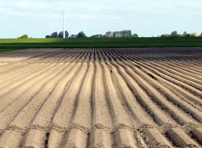 Újabb rendkívüli, agráriumot támogató intézkedéseket vezetne be az EU