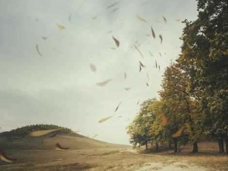 Többnyire felhős, szeles időnk lesz, néhol záporokkal