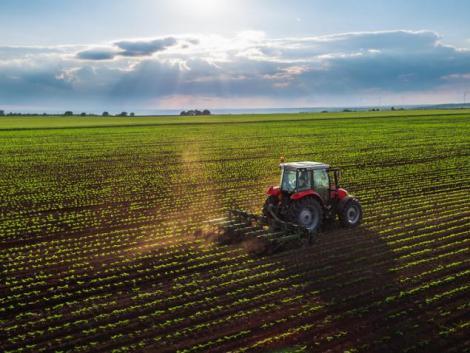 Hogyan lehet Covid-ready a mezőgazdaság?