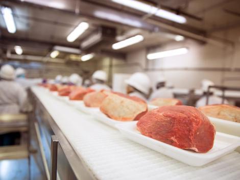 Egyre több fertőzéshullám a húsüzemekben