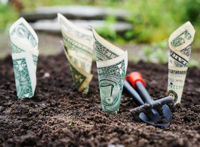 Agrármentőcsomag és megnövelt összegű támogatások a gazdáknak