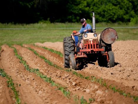 Az Agrárminisztérium támogatja a nyugat-balkáni országok uniós csatlakozási folyamatát