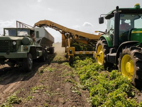 Rendkívüli hír: újabb 80 milliárd forint támogatás jut a magyar agráriumnak!
