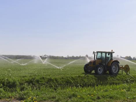 Öntözés nélkül nem lesz fenntartható a kertészeti gazdálkodás Magyarországon?