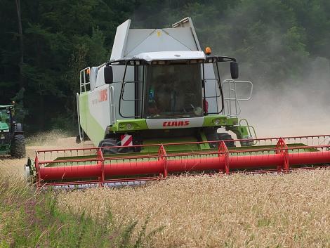 Keserű lesz az idei aratás –  Európa-szerte gyenge gabonatermés miatt aggódnak a gazdák