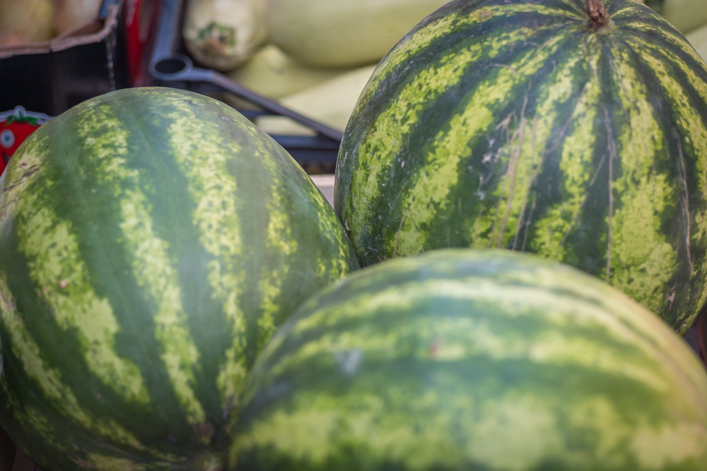 görögdinnye