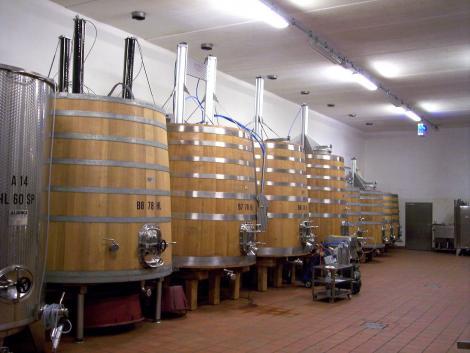 Bioetanol és fertőtlenítő készül több millió hektoliter borból