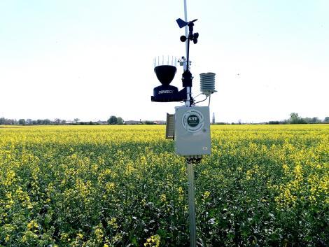 Virtuális határszemle 4.: időjárásadatok egyenesen a szántóföldről!