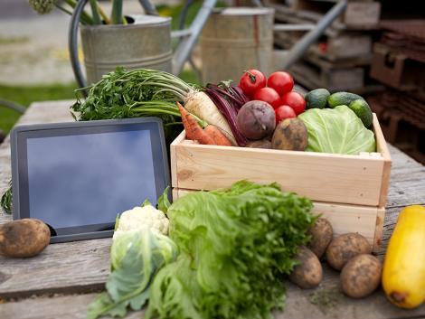 Kezdődik a nagy agrárösszeírás!
