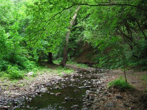 Nyitnak a nemzeti parkok! Ismét teljes kínálattal várják a pihenni és feltöltődni vágyókat