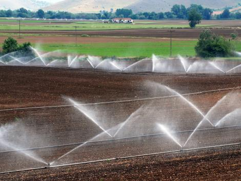Erős kezdés: 100 milliárd forintos programmal indítja a nyarat az agrártárca