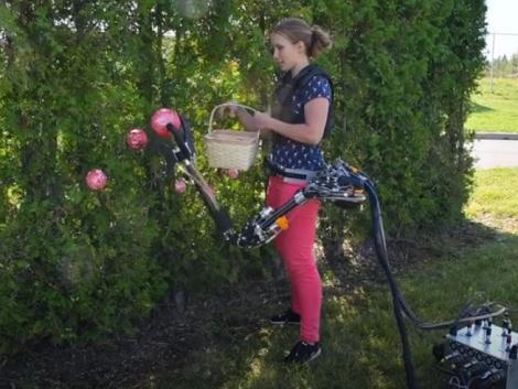 Zseniális fejlesztés: derékra rögzíthető robotkar gyorsítja a betakarítást – VIDEÓ