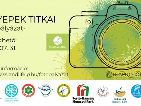 Fotópályázatot hirdetnek a gyepes élőhelyek értékeinek bemutatására