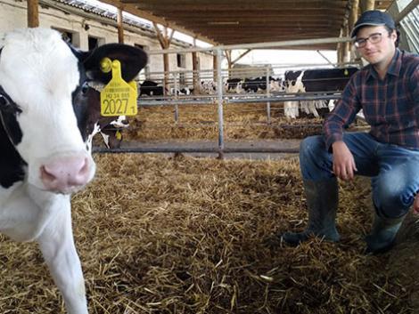 Miért érdemes állattenyésztésről tanulni?