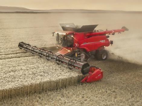 Megkezdődött az aratás, jelentős a termésveszteség