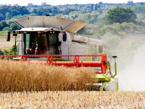 Az aratási munkák alatt fokozott figyelmet kér a közlekedőktől az agrárkamara