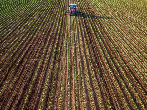 Elképesztő fejlesztési kényszer van az agráriumon, de a gazdák nincsenek egyedül
