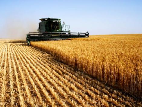 Folytatódhat az aratás: megszűnik az eső