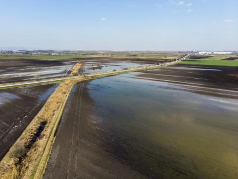 Víz alatt a szabolcsi földek – jelentős terméskieséssel kell számolni