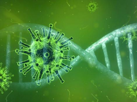 Koronavírus: speciális előírások érvényesek az agrárágazatban dolgozó idénymunkásokra